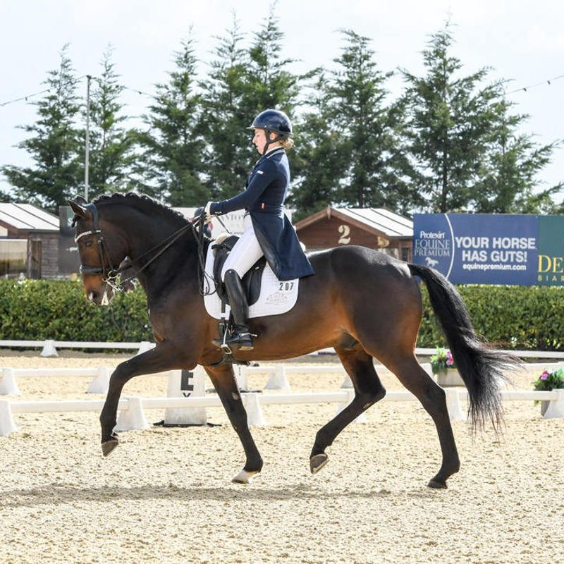 dressage horse and rider Izzy Chaplin