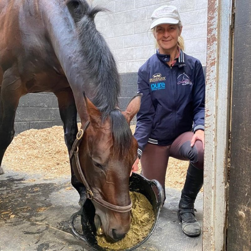 Aiding Hydration with Soaked Feeds
