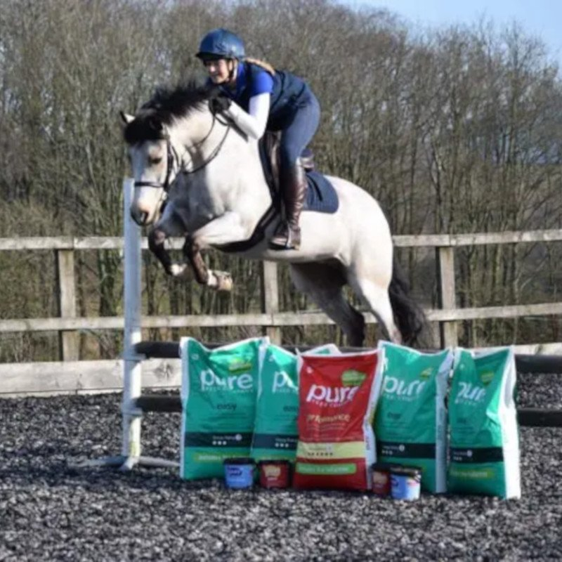 Feeding supplements to horses